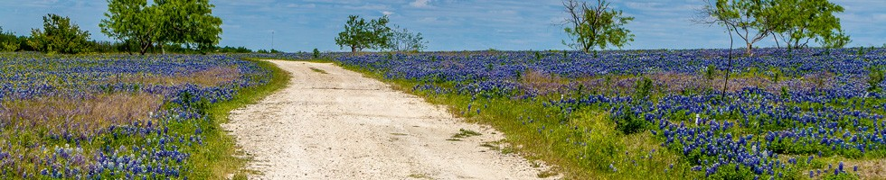 rural-texas-dirt-road